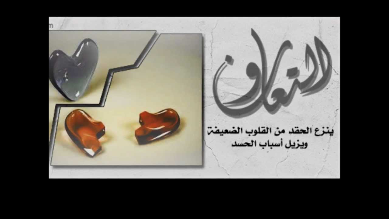 بالصور صور عن التعاون , وتعاونوا علي البر والتقوي 4091 6
