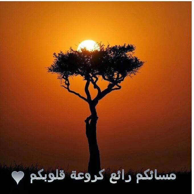بالصور دعاء المساء , اذكار وادعيه للمساء 6105 8