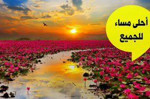 بالصور مساء الخير للجميع , اسعد الله مساؤكم بكل الهناء 6151 11 310x205
