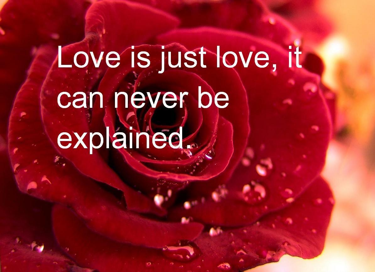 بالصور عبارات حب قصيره , اجمل كلمات الحب الرومانسية 2932 3