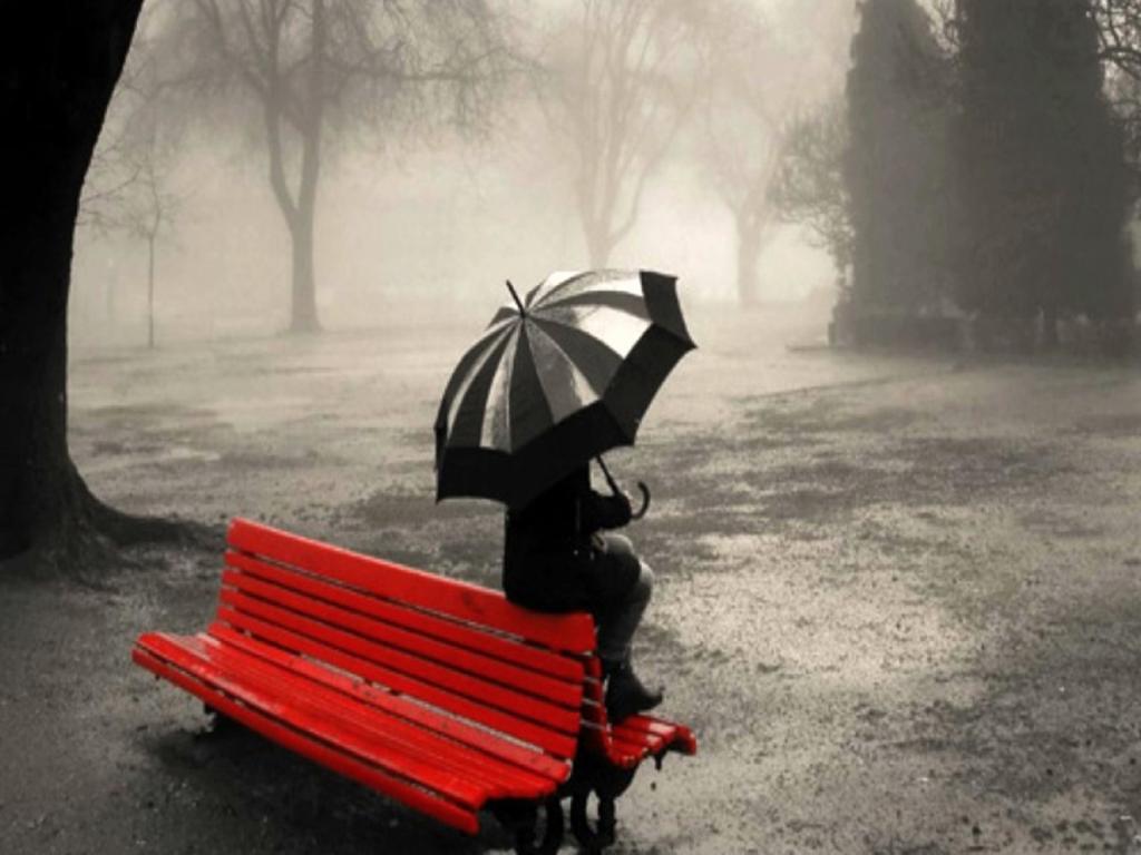 بالصور اجمل الصور في العالم فيس بوك , صور روعة للمشاركة علي الفيس 2933 8