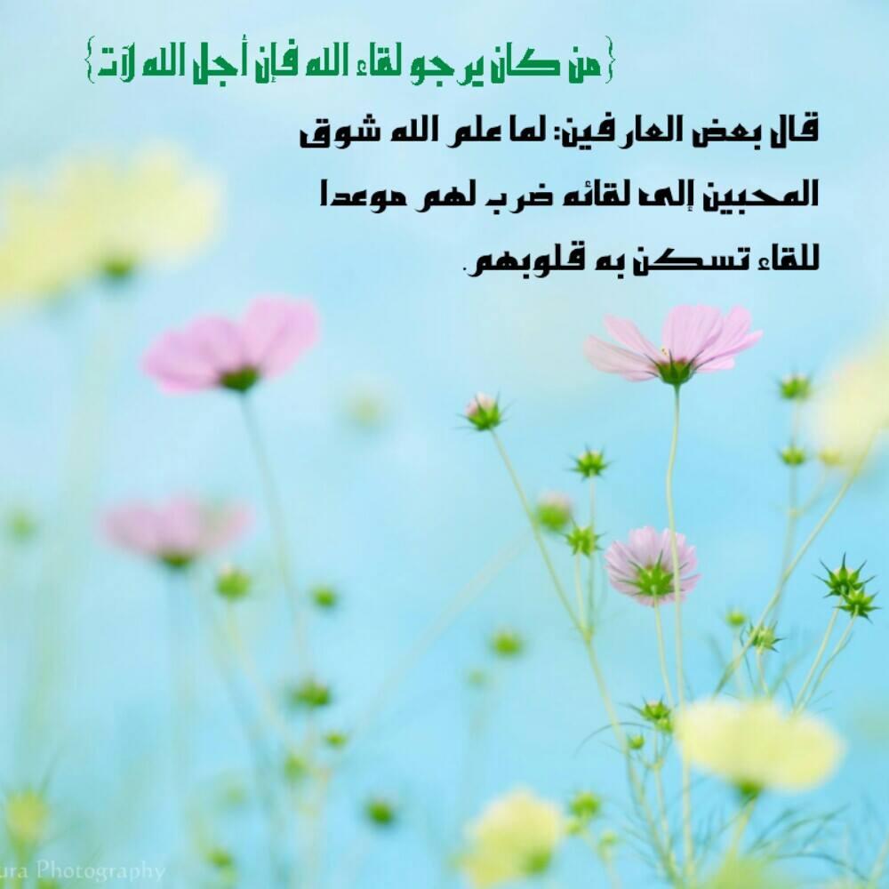 بالصور رمزيات اسلاميه , اجمل الصور والخلفيات الاسلامية 3050 3