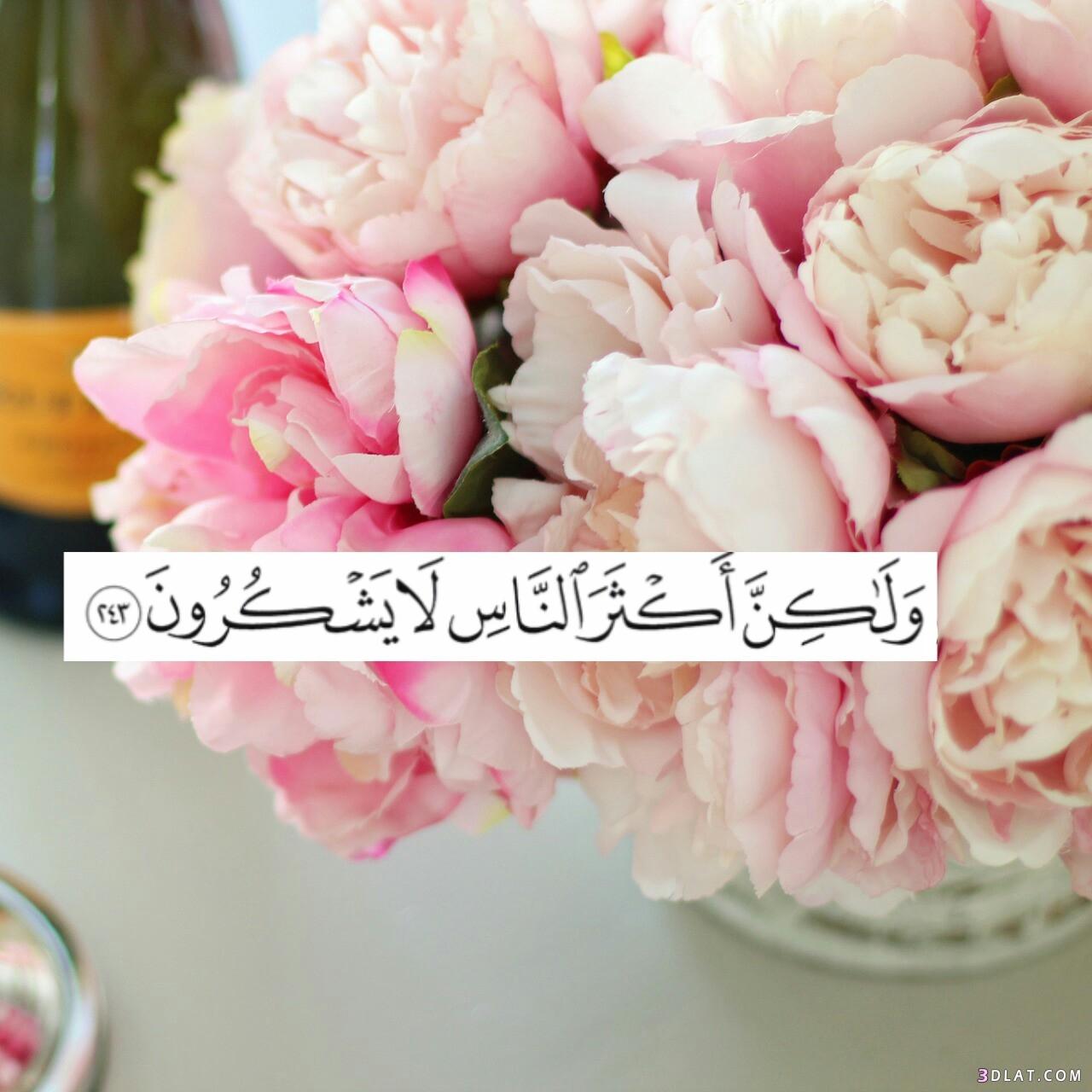 بالصور رمزيات اسلاميه , اجمل الصور والخلفيات الاسلامية 3050 6