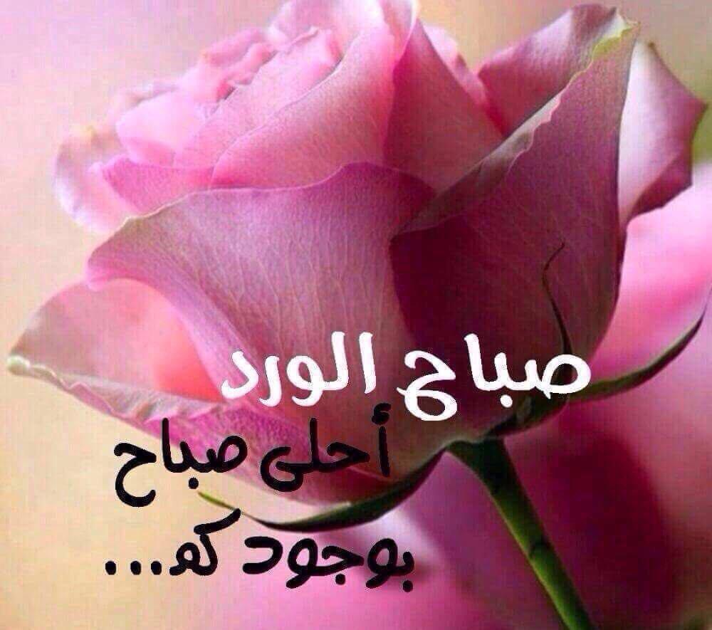 بالصور صور صباح الخير رومانسيه , اجمل بطاقات الصباح 3192 3
