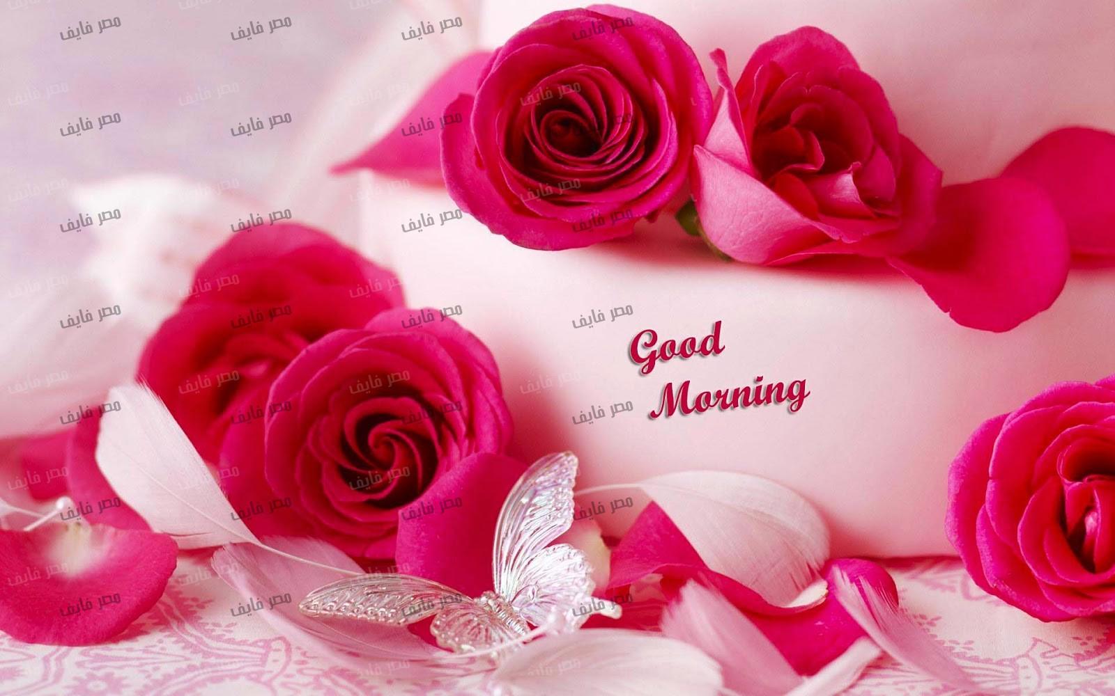 بالصور صور صباح الخير رومانسيه , اجمل بطاقات الصباح 3192 5