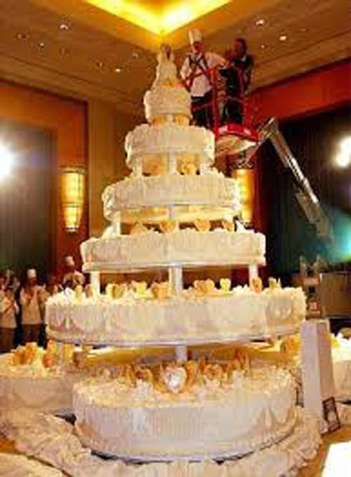 بالصور اجمل تورته فى العالم , تورتات حفلات الزفاف 6093 6