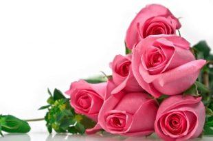 صوره زهور الحب , صور للزهور رمز الحب