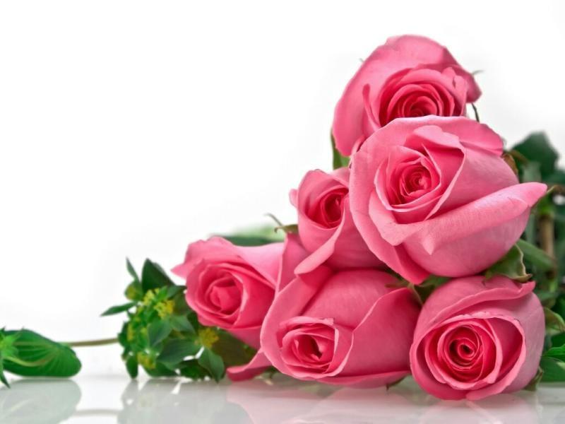 صور زهور الحب , صور للزهور رمز الحب
