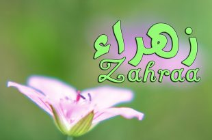 بالصور اسم زهراء , صور لاسم زهراء 6128 10 310x205