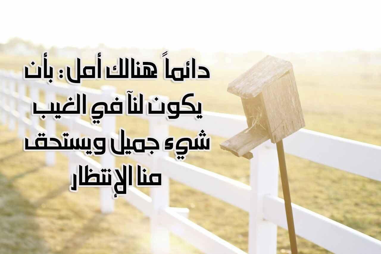 بالصور صور عن السعاده , السعاده فى كلمه فى صوره 165 10