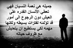 بالصور رسائل زعل الحبيبة على الحبيب , لغه التعبير عن الزعل بالرسائل 1930 10 310x205