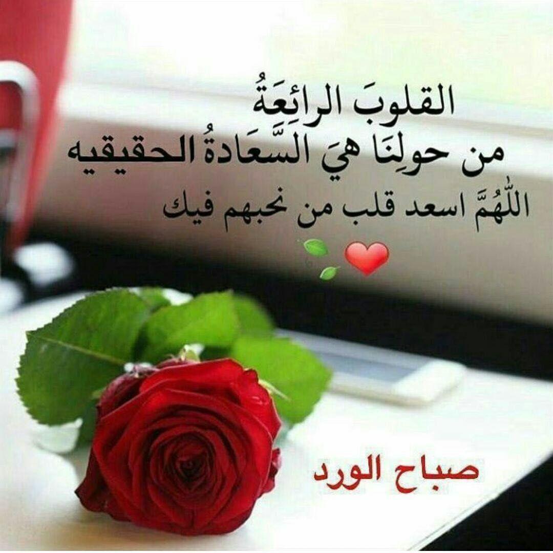 صور رسالة حب صباحية , الحب فى الصباح مع رساله هادئه