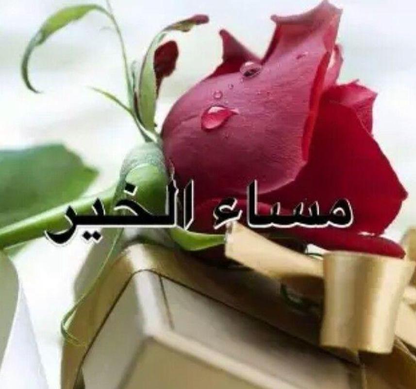 بالصور كلمات صباحية رقيقة , اجمل العبارات الصباحية 2019 3846 12