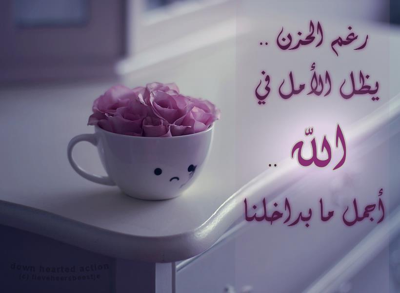 بالصور كلمات صباحية رقيقة , اجمل العبارات الصباحية 2019 3846 13