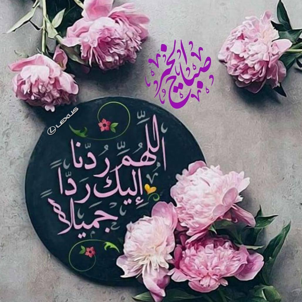 بالصور صباح جميل , الجمال كله فى كلمات تقال فى الصباح 3873 11