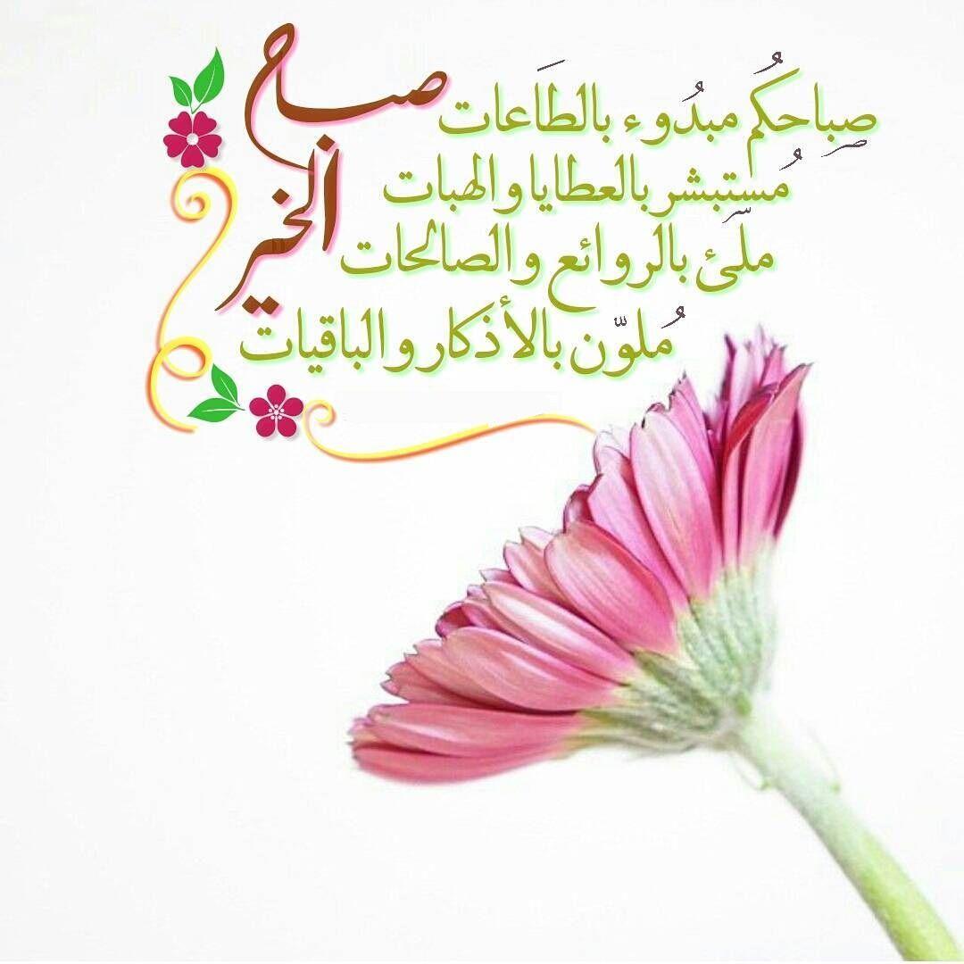 بالصور صباح جميل , الجمال كله فى كلمات تقال فى الصباح 3873 3