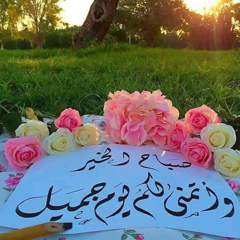بالصور صباح جميل , الجمال كله فى كلمات تقال فى الصباح 3873 8