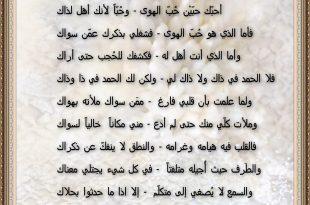بالصور ابيات شعر حزينه , قصائد حزينة جدا 3893 13 310x205