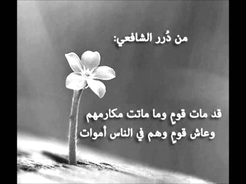 بالصور ابيات شعر قصيره حكم , اشعار قصيره للحكم والموعظة 3903 4