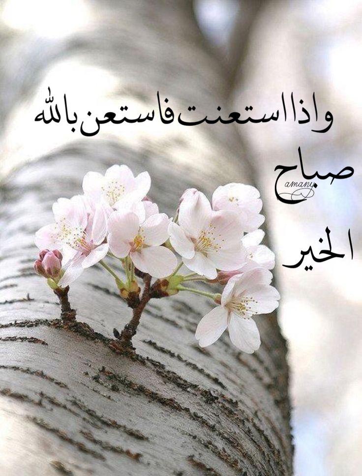 بالصور عبارات صباح الخير , جمل بسيطه تقال فى الصباح 4691 11