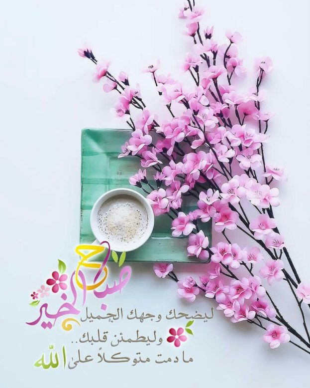 بالصور عبارات صباح الخير , جمل بسيطه تقال فى الصباح 4691 12