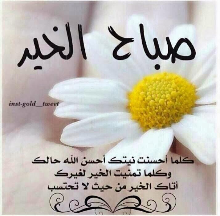 بالصور عبارات صباح الخير , جمل بسيطه تقال فى الصباح 4691 6