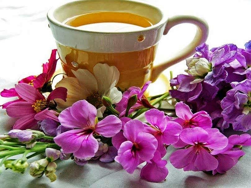 بالصور صباح العسل , احلى صباح مع كلمات براقه 4701 4