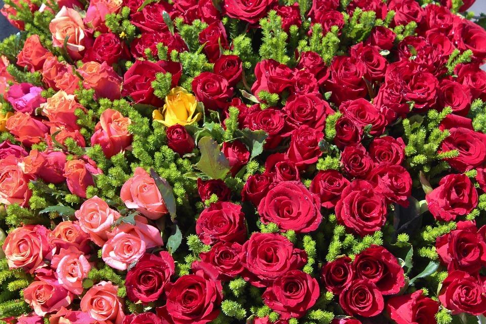 بالصور صور ورد رومانسي , رومنسيات تظهر بالورود 4732 15