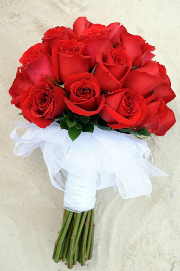 بالصور صور ورد رومانسي , رومنسيات تظهر بالورود 4732 6