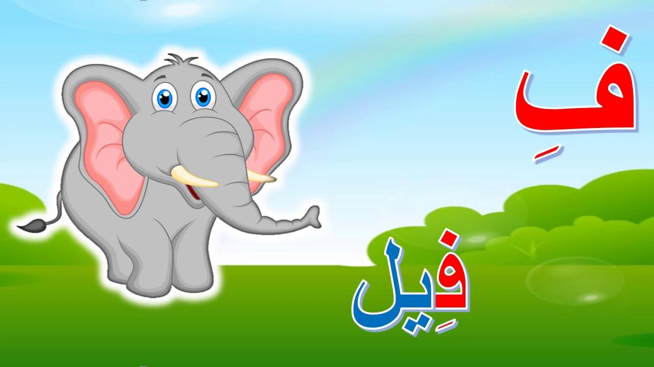 بالصور صور حرف ف , حروف من اللغه العربيه 4744 1