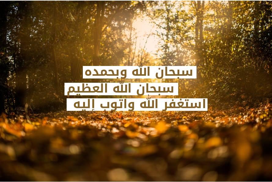 بالصور اجمل الصور الاسلامية في العالم , اكثر الصور جمالا فى العالم 5129 7
