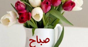 اجمل صباح الخير , كلمات جميله لصباح الجمال
