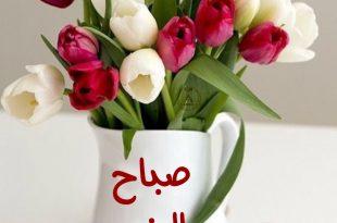 بالصور اجمل صباح الخير , كلمات جميله لصباح الجمال 5171 13 310x205