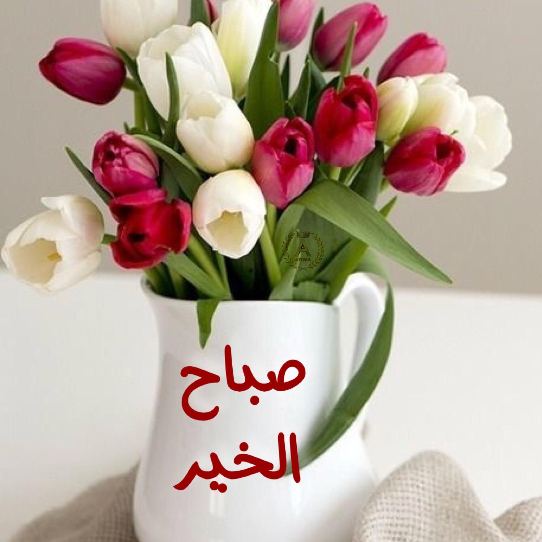 بالصور اجمل صباح الخير , كلمات جميله لصباح الجمال 5171