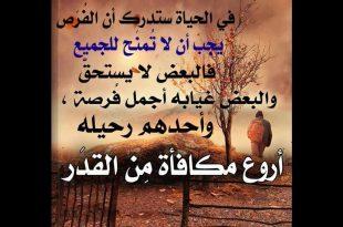 بالصور اجمل حكمة في الحياة , حكم عظيمه عن الحياه 5209 13 310x205