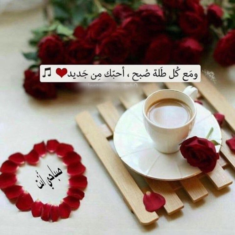 بالصور اجمل رسائل الحب , الحب ورسايل تحفه جامده 5432 7