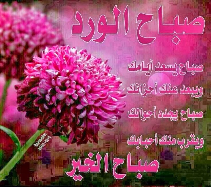 بالصور صور صباحيه جميله , جمال الكلمات فى الصباح 5507 8