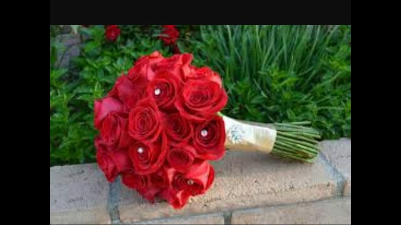 بالصور صور اجمل ورد , الورد وما يقوله فى صوره 6659 3