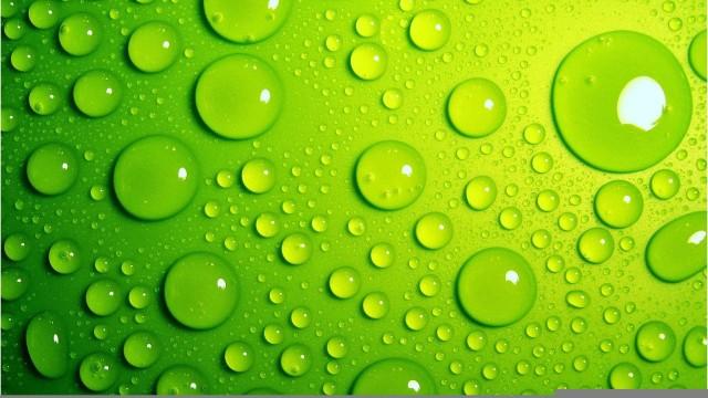 بالصور خلفية خضراء , صور باللون الاخضر 882 4