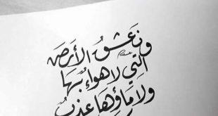 بالصور عبارات قصيره مزخرفه , فن الزخرفه للكلمات الحزينه 667 3 310x165