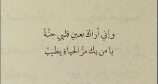 عبارات جميلة عن الحب , اروع وارق كلمات الحب