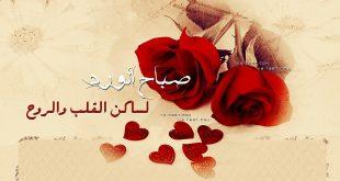 بالصور كلمات عن الصباح قصيره , صباح الخيرات والبركات 2527 12 310x165