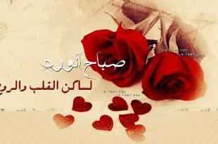 بالصور كلمات عن الصباح قصيره , صباح الخيرات والبركات 2527 12 310x205