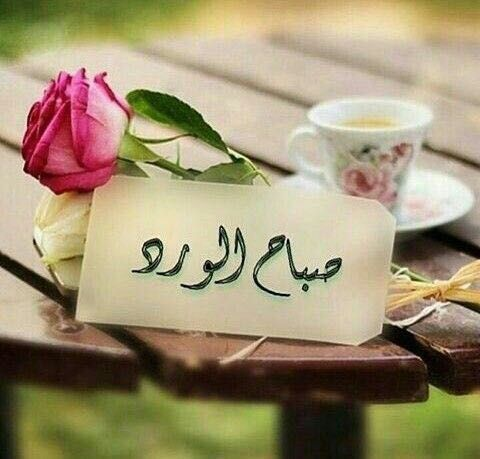 بالصور كلمات عن الصباح قصيره , صباح الخيرات والبركات 2527 8
