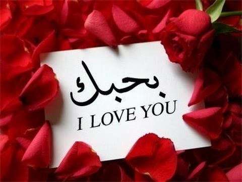 بالصور اجمل كلمات الحب , صور بها كلمات عذبه 534 11