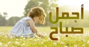 صور بيسيات صباحيه , كلمات امل عن الصباح