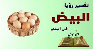 بالصور تفسير رؤية البيض في المنام للمتزوجة , تفسير رؤيا البيض لابن سيرين 2195 3 310x165