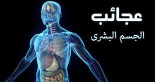 صور معلومة طبية , معلومات طبيه مدهشه عن جسم الانسان