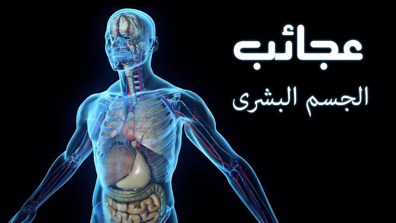 صورة معلومة طبية , معلومات طبيه مدهشه عن جسم الانسان