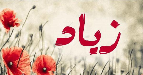 صور معنى اسم زياد , ماهو معنى اسم زياد